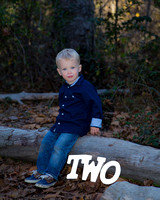 Toddler-Outdoor-Birthday-Milestone