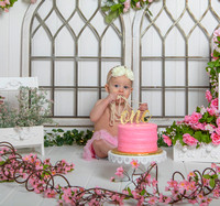 """girl first birthday-cake-smash"", ""first-year-cake-smash-pearl-and-pink"