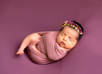 Newborn-baby-lavende- backdrop-floral-headband, foral,